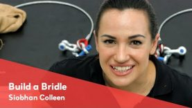 Build a Bridle – Siobhan Colleen
